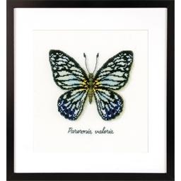 Kit point compté Papillon bleu