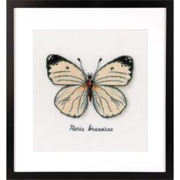 Kit point compté Papillon blanc