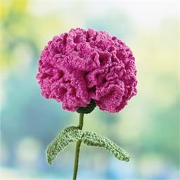 Kit fleurs au crochet Œillet