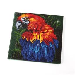 Kit cadre perles à coller perroquet