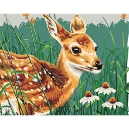 Peinture par numéros Faon au printemps