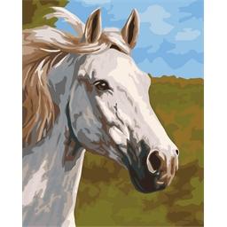 Peinture par numéros Cheval