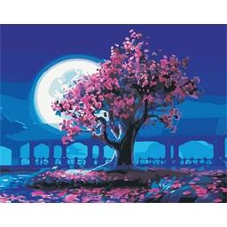 Peinture par numéros Nuit magique