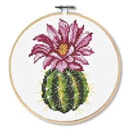Kit point de croix Cactus rose