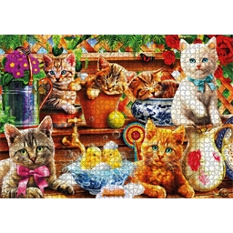 Puzzle 1000 pièces Chatons en pot