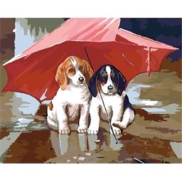 Peinture par numéros Chiots sous la pluie