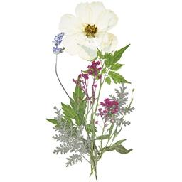 Set de fleurs pressées
